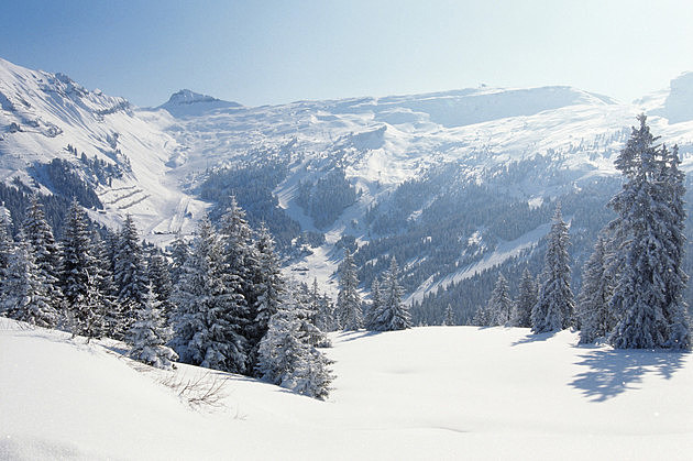 Snow-covered trees and mountains, winter